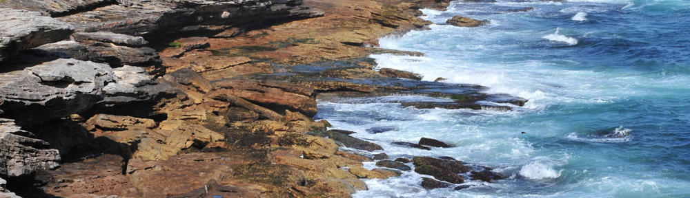 E-Business-Agentur
